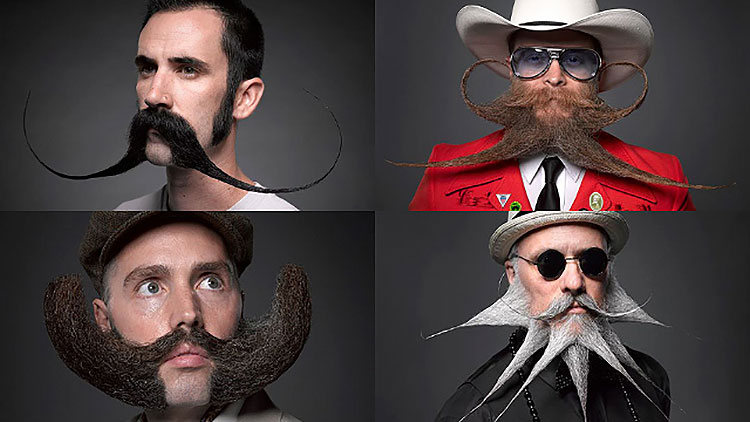 four men with crazy beards contest