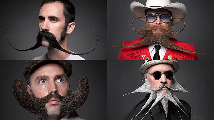 four men with crazy beards contest