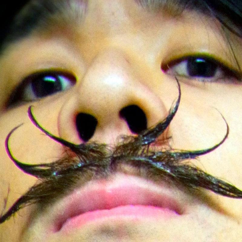 spider mustache closeup