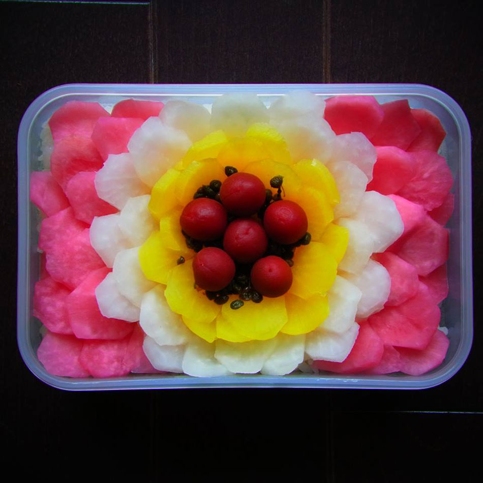 hanasaka flower bloom bento art