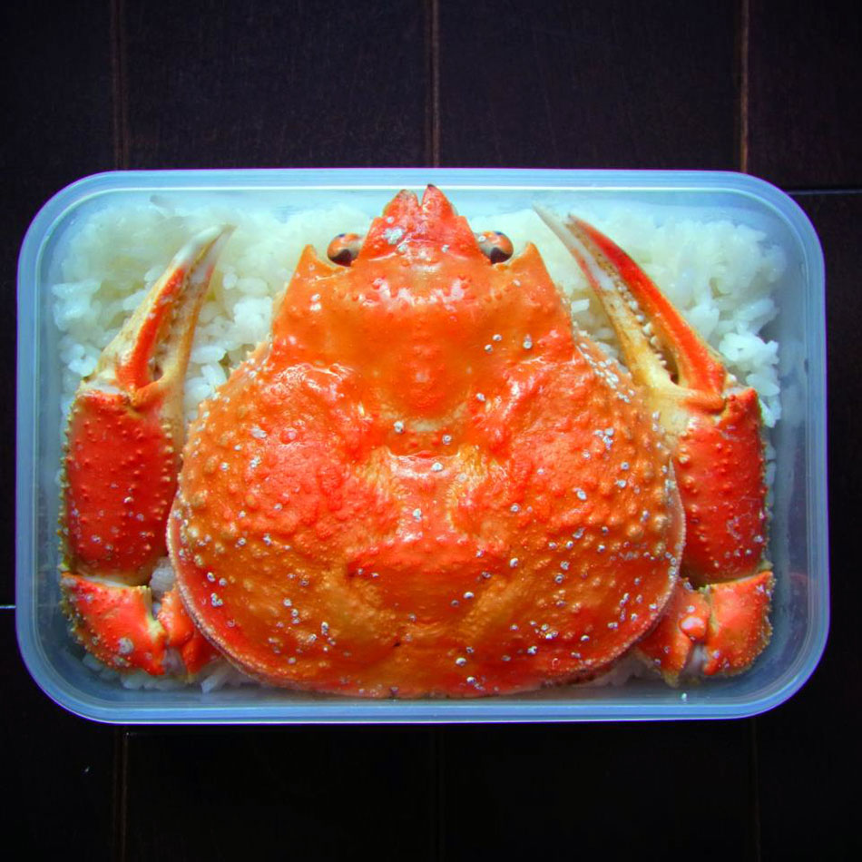 kani crab shell bento art