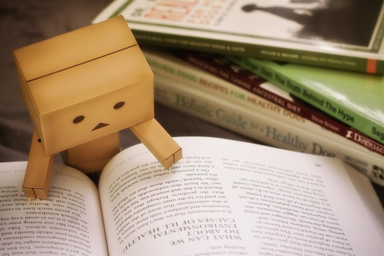 susanna fessler interview danbo reading a book