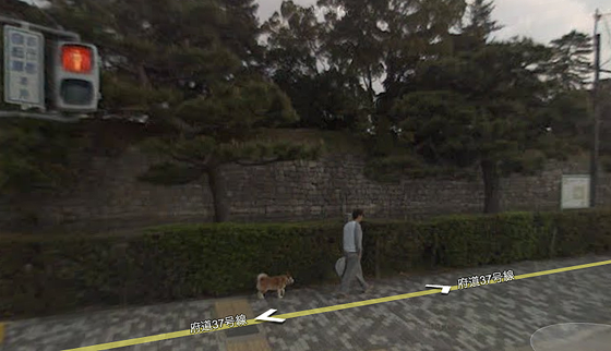 google earth man walking outside in kyoto