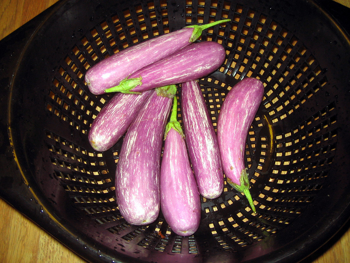 japanese eggplants in a strainer