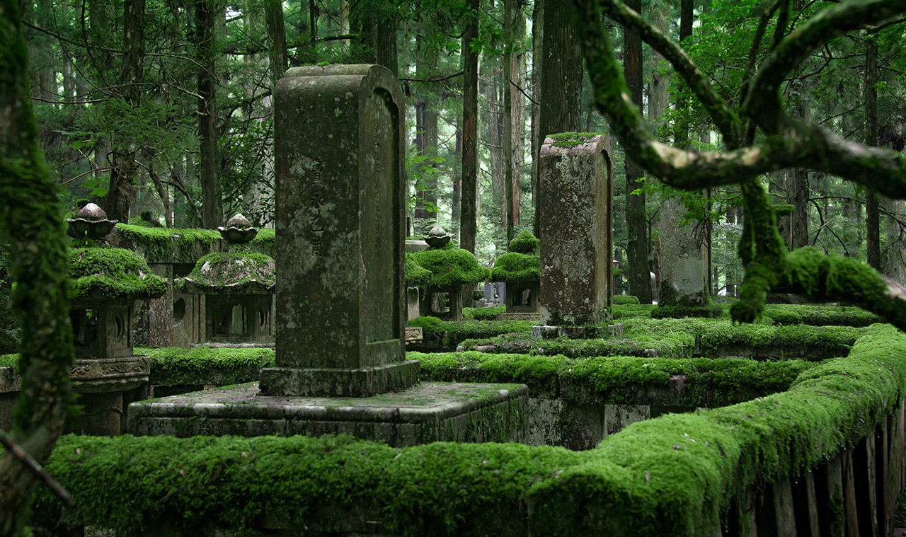 the okunoin graveyard in the forest