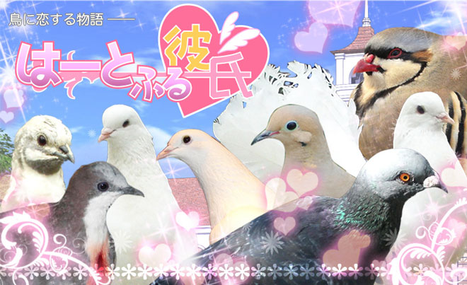 promotional art for pigeon dating sim game