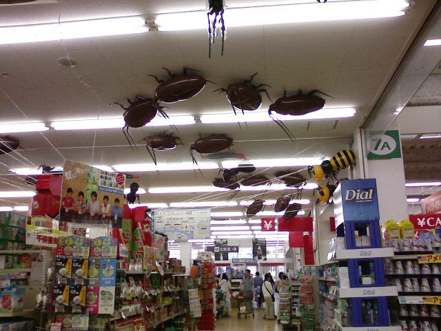 giant cockroach balloons on a store ceiling