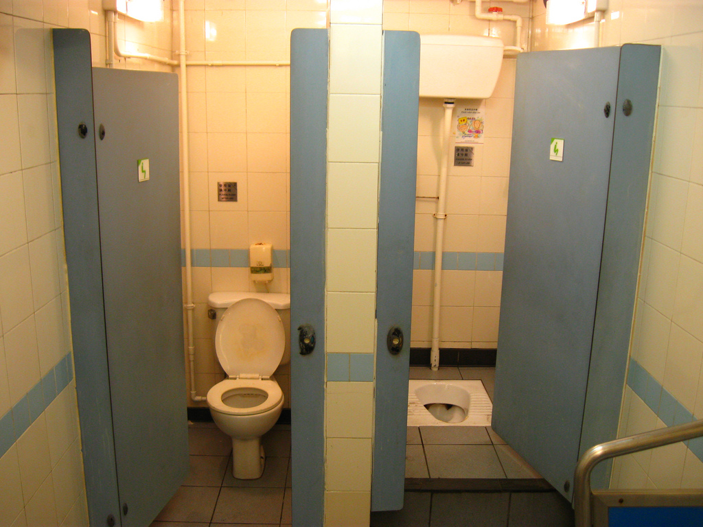 western and eastern toilets
