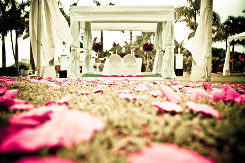 Flower petals at a wedding ceremony