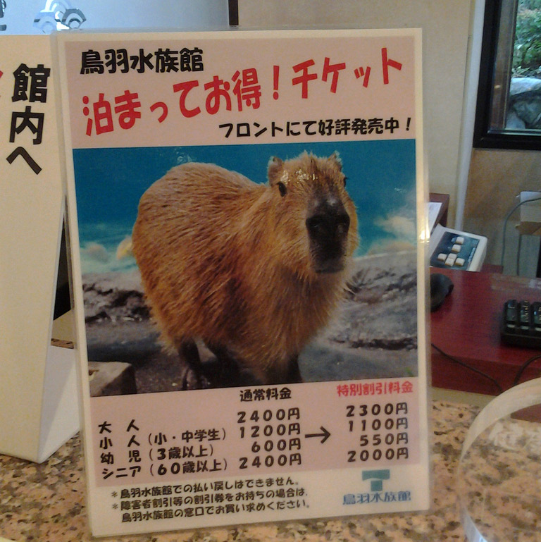 capybara ad in japan