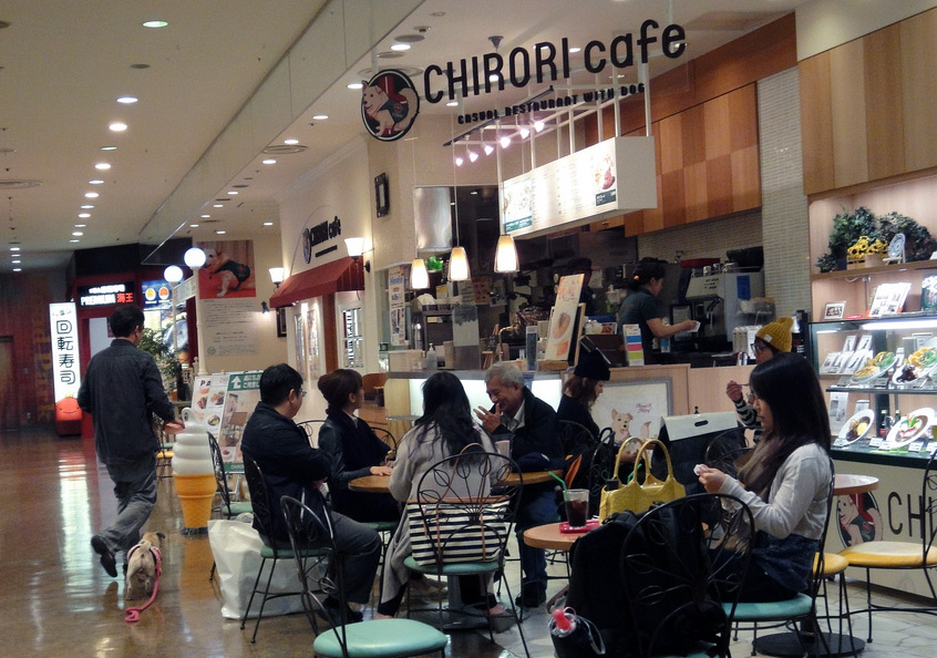 patrons sitting at chirori dog cafe