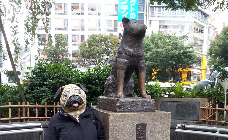 statue of dog and toy of pug