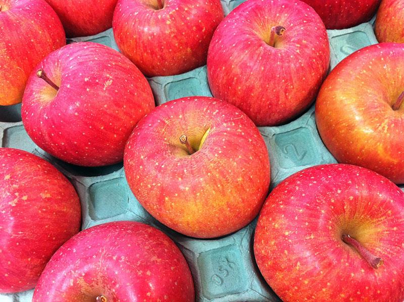 Fuji apples from Aomori-ken