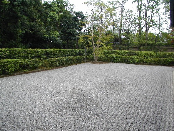 rock garden with just grooved sand