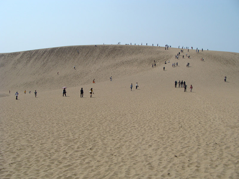 people walking over sand dune