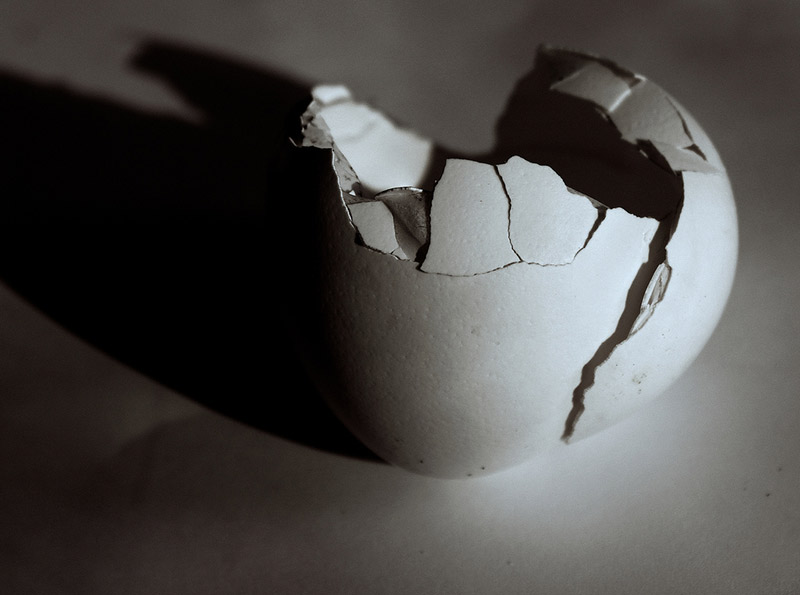 black and white broken eggshell