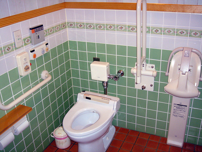 handicap accessible toilet and bathroom
