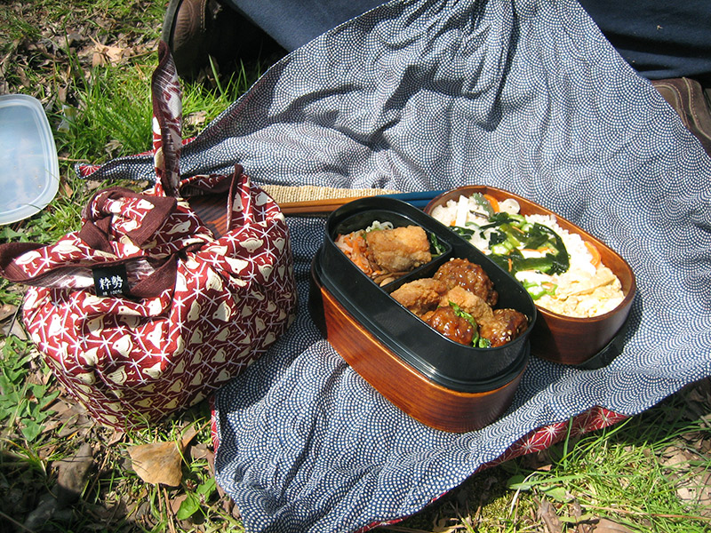 bento boxes for picnic