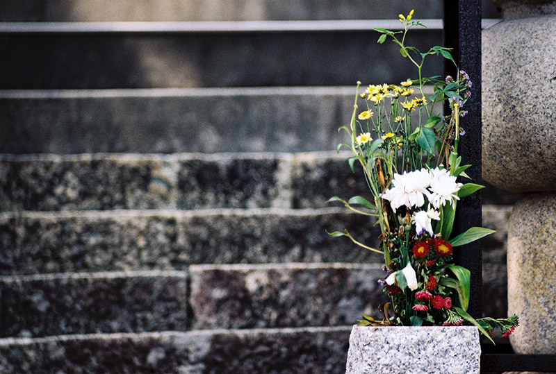 Flower arrangement at the base of a temples stairs
