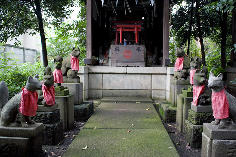 lines of kitsune statues at inari shrine