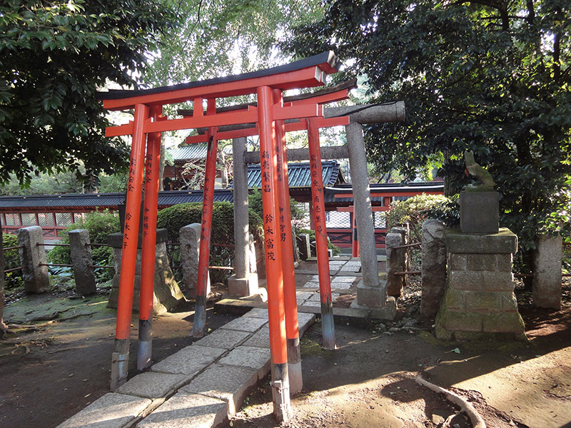 red torii gates at an inari shrine