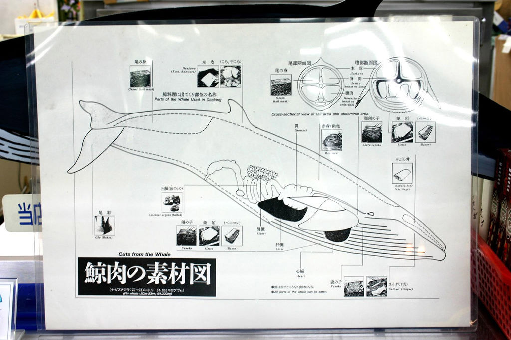 A poster detailing parts of whale meat