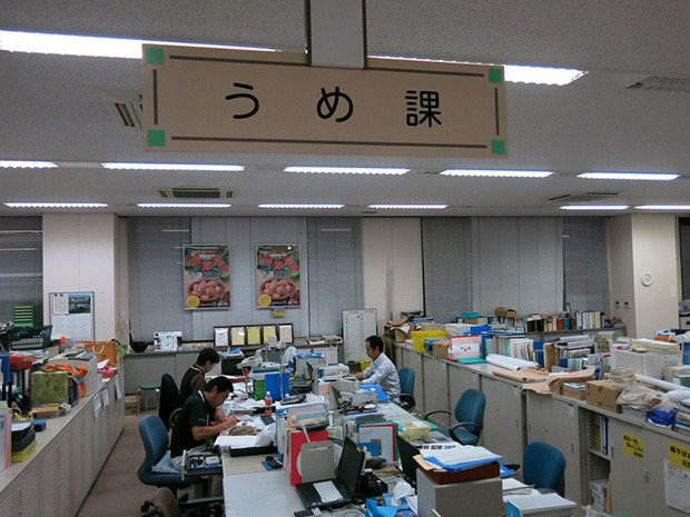 desks inside a Japanese office