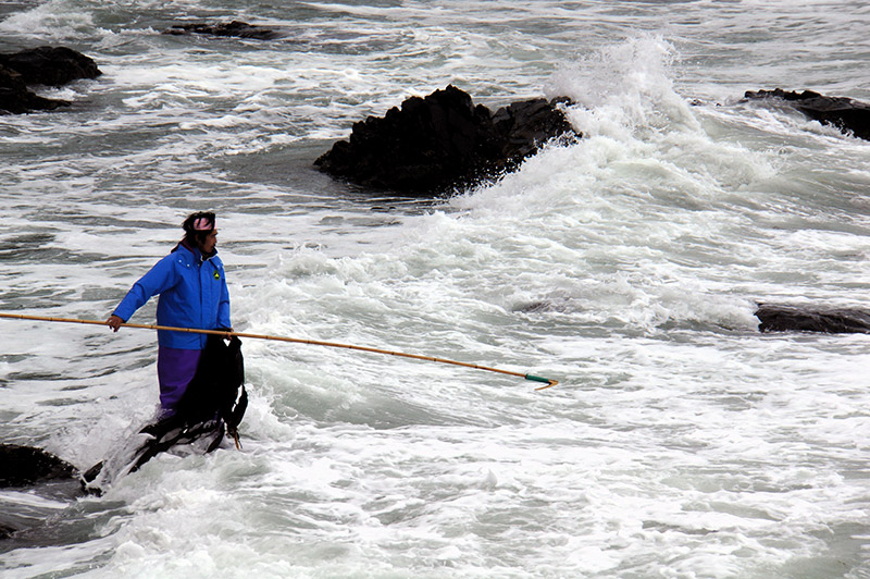 man fishing nori in present day japan