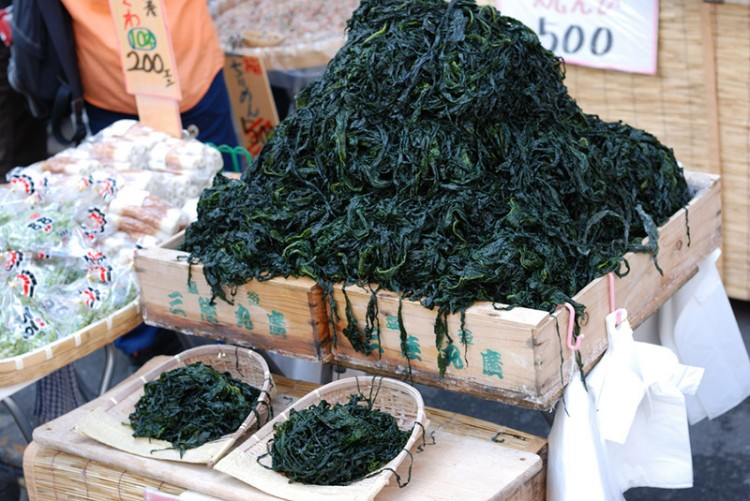 japanese edible seaweed for sale at market