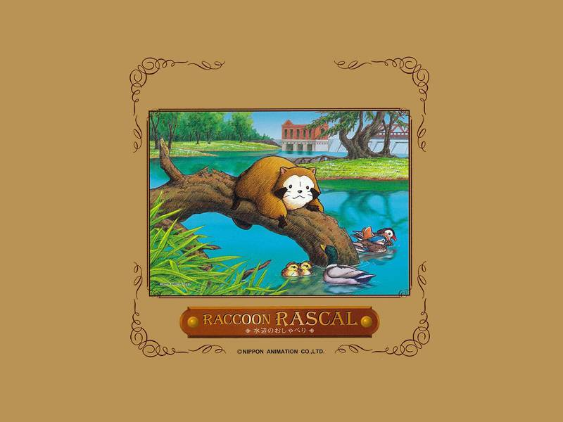 Book cover showing Raccoon Rascal