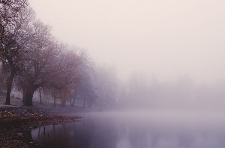 foggy morning river