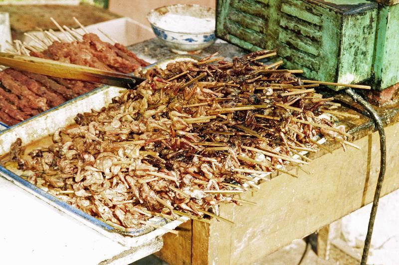 grilled kebab sparrow meat market beijing