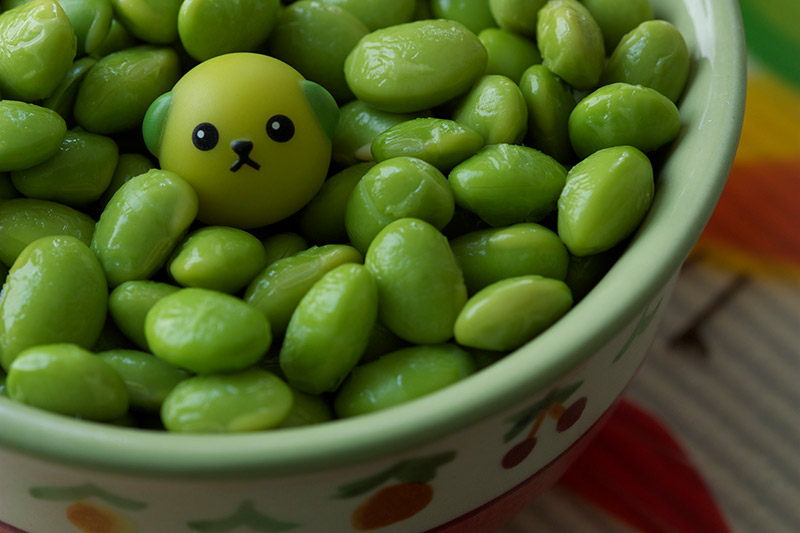 Mameshiba in a bowl of edamame