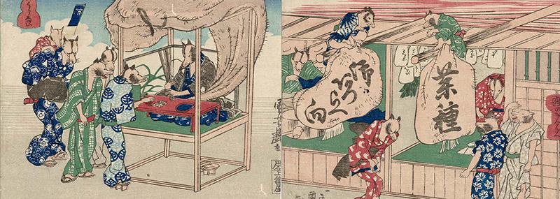 tanuki in kimono art