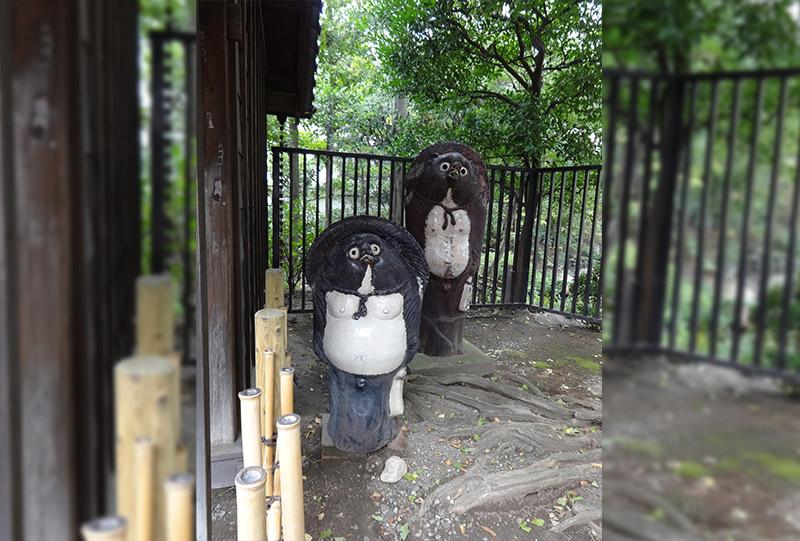 tanuki statues at a temple