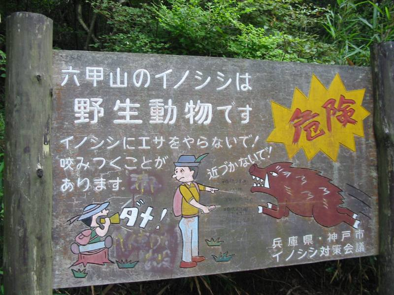 A Japanese warning sign about inoshishi