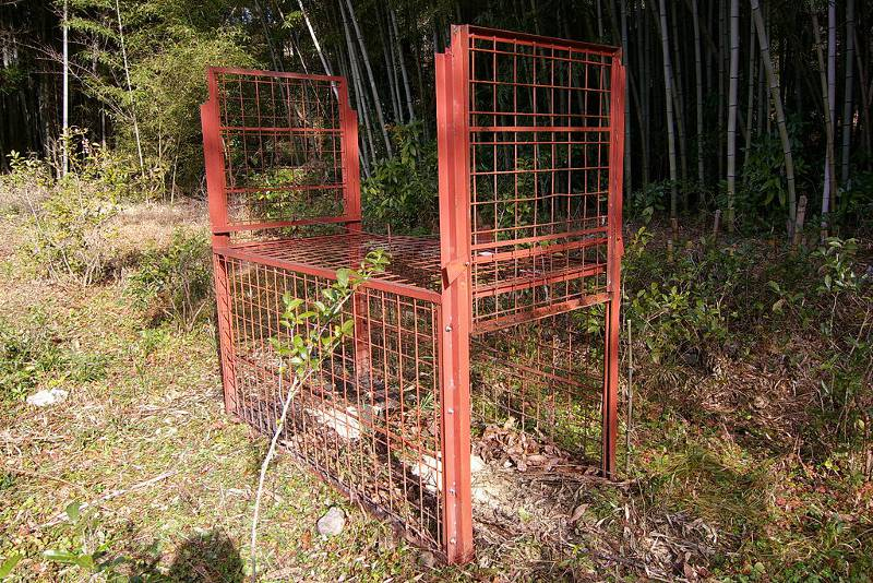 Boar cage in the forest