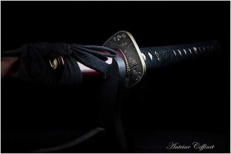 Japanese sword viewing hilt and scabbard dark
