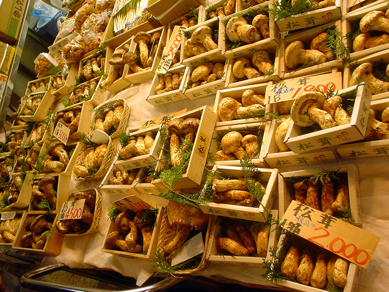 boxes of japanese mushrooms for sale