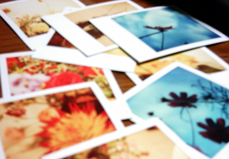 polaroids on a table