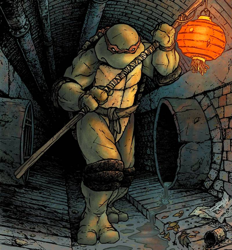 Donatello from Teenage Mutant Ninja Turtles with ancient Japanese staff