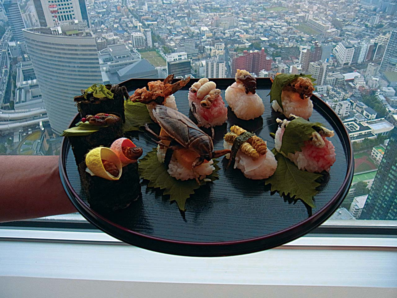 plate sushi topped with insects