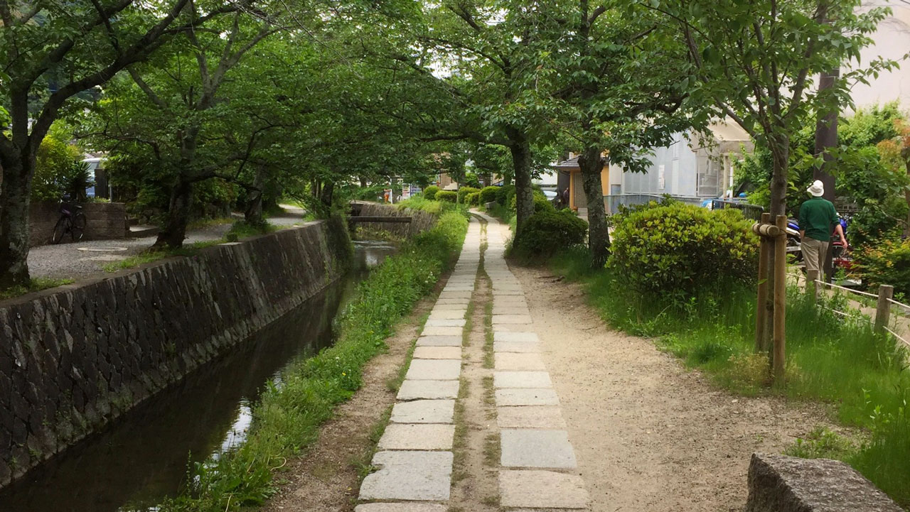 walking philosophers path one day in kyoto