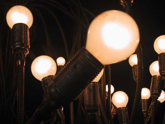lightbulbs connected to flexible sockets