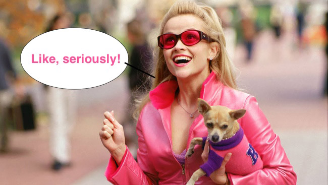 blonde woman in pink suit holding small dog
