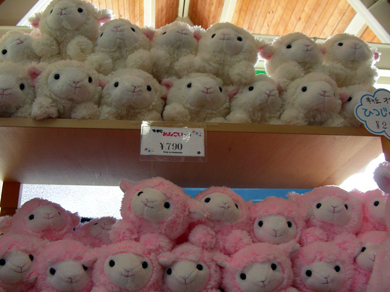 stuffed sheep on shelves