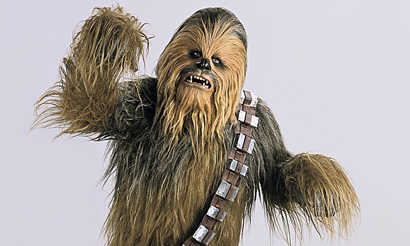 Chewbacca is the ultimate baka