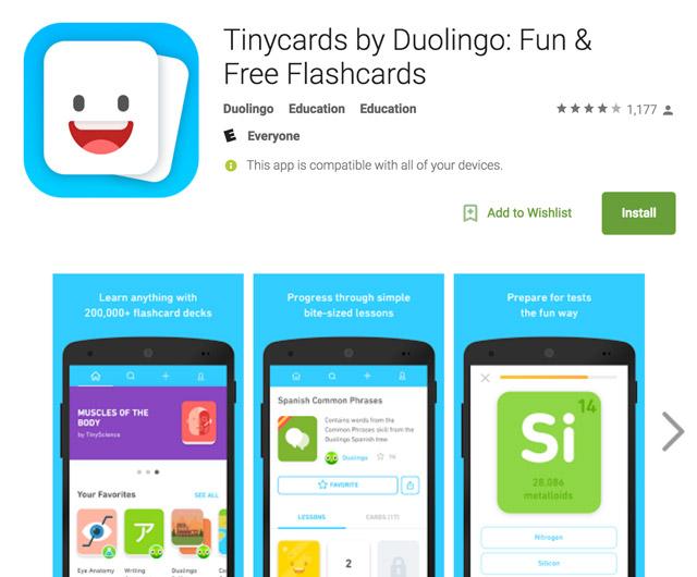 tinycards srs app logo