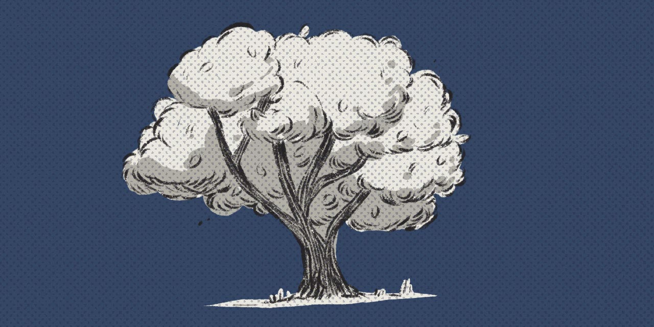 shady tree on blue background