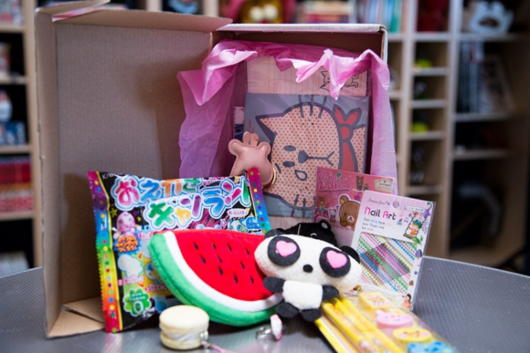 The variety of items inside the Kawaii Box